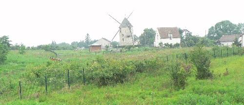 Pelouse du Moulin du Sempin. La pelouse reconstituée (année 2007) très verte après un printemps pluvieux.
