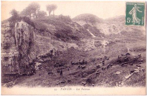 Pantin-moutons-18635