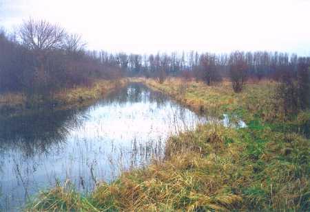 """Allées de la """"Plaine inondable"""" déjà envahies par les eaux en 2000"""