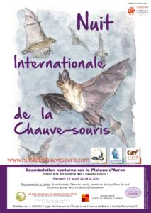Nuit Internationale de la chauve-souris (Ronsy-sous-Bois) @ Plateau d'Avron | Neuilly-Plaisance | Île-de-France | France