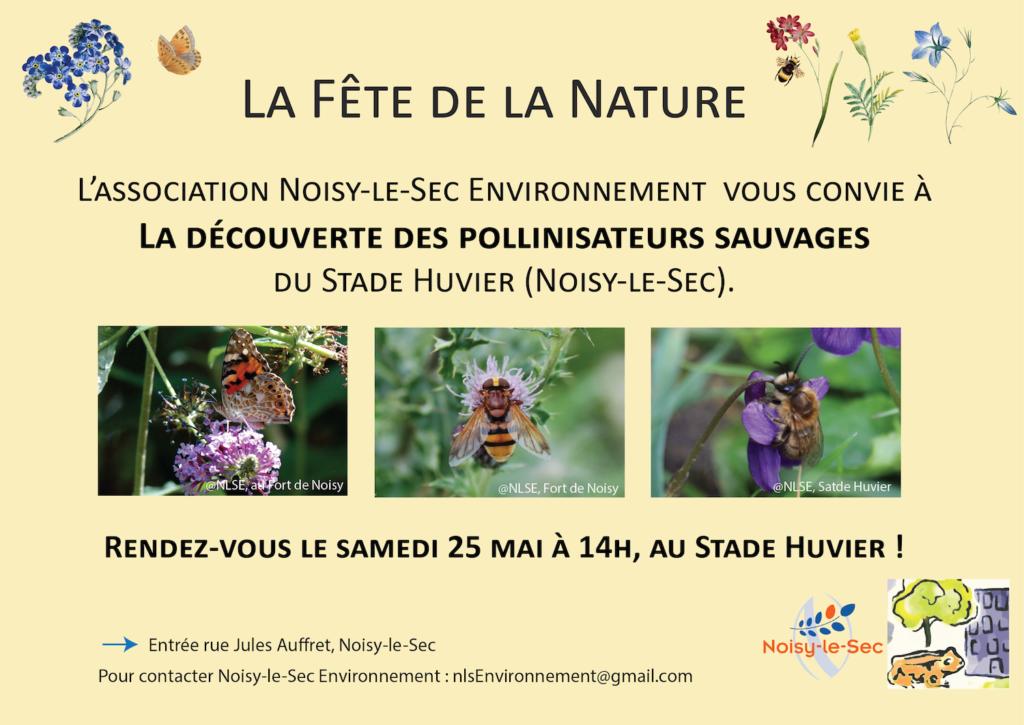 A la découverte des pollinisateurs sauvages du stade Huvier (Noisy-le-Sec)